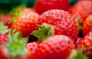 View The Strawberry Dishes Album